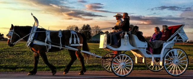Early evening carriage ride at Honsberger Estate